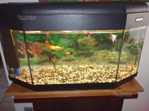 acquario pet company 150 litri posot class