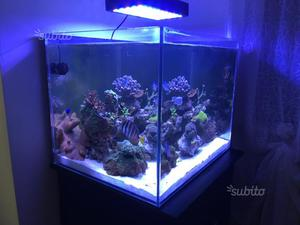 Plafoniera a led acquario