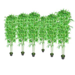 vidaXL Pianta piante di bambù, set da 6, bambù