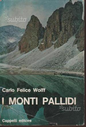 """ i monti pallidi "" di Carlo Felice Wolff"