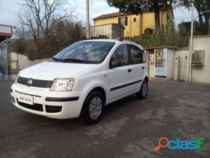 FIAT Panda benzina in vendita a Perugia (Perugia)