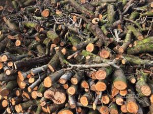 Vendiamo pellet tronchetti e legna da ardere posot class for Legna da ardere brianza
