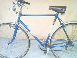Bicicletta da uomo 28 o montain bike