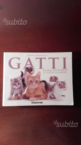 Guida illustrata di tutte le razze di gatti