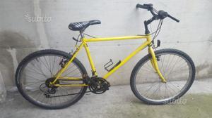 Bici mtb mountain bike con cambio funzionante