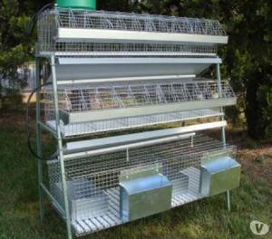 Occasionissima gabbie per conigli da ingrasso  Posot Class