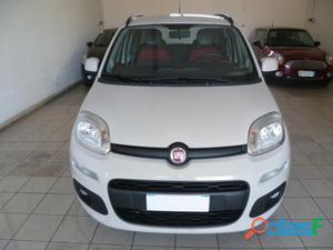 FIAT Panda benzina in vendita a Brindisi (Brindisi)