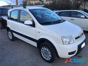 FIAT Panda benzina in vendita a Arezzo (Arezzo)