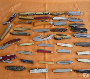 Collezionista coltellini di varie misure e marche