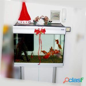 Vendo acquario mobile originale