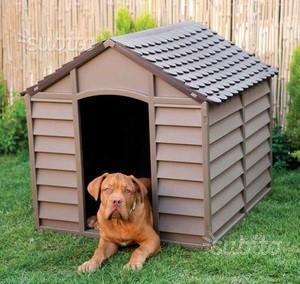 Cuccia per cani taglia media grande verde o marro