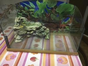 Acquario tartarughe vasca contenitore con posot class for Acquario tartarughe completo