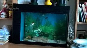 Lampada acquario con pesci posot class for Neon pesci prezzo