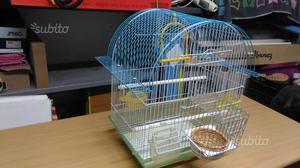 Gabbia uccelli