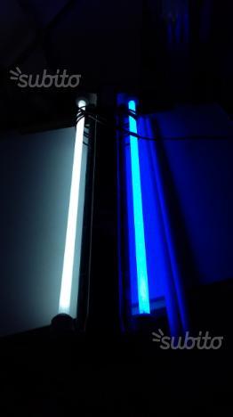 Neon acquario juwell