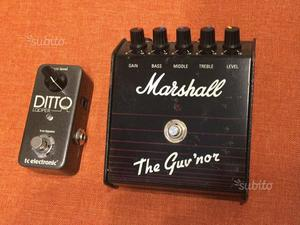 Distorsore Guv'Nor Marshall & Ditto Looper