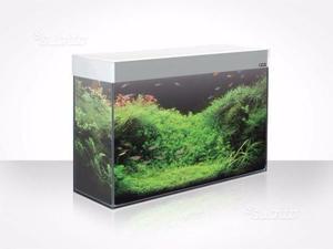 Filtro esterno acquario askoll kubo g3 posot class for Acquario bianco usato