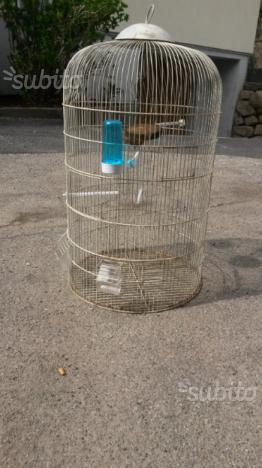 Gabbia per canarini, pappagalli e cardellini