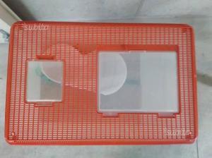 Maschera in plastica per decorare torte posot class for Tartarughe vaschetta