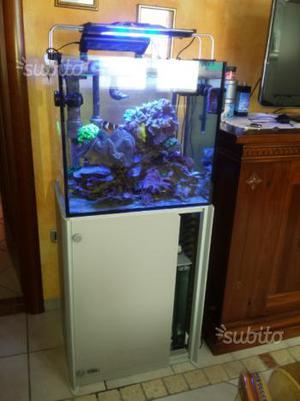 Vasca acquario aperta vetro da 8mm capacit posot class for Tartarughiera grande vetro