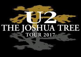 Vendo 1 biglietto prato per concerto U2 a Roma il