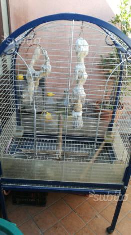 Gabbia per pappagallo