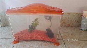 Acquario in plastica posot class for Filtro x acquario