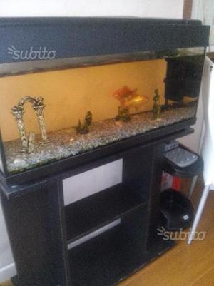 Acquario + mobile +pesci e accessori
