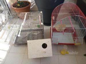 Due gabbie complete e nido a due camere