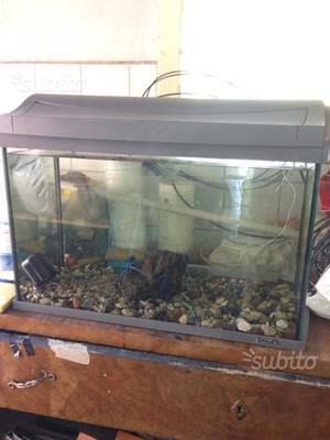 Acquario esagonale con accessori posot class for Acquario completo prezzi