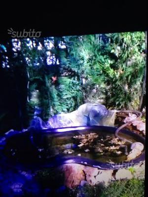 Vendo laghetto artificiale per giardino posot class for Alghe laghetto artificiale