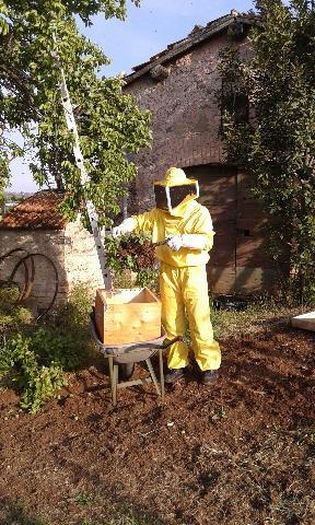 SCIAMI d'api apicoltore