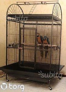 Voliera per grandi volatili pappagalli altro