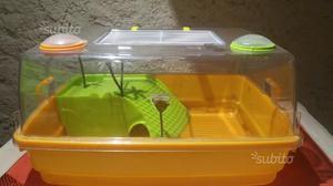 Vasca acquaterrario per tartarughe posot class for Depuratore per acquario tartarughe