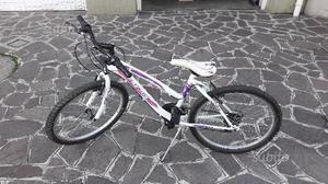 Bici Frejus Fm 620 Posot Class