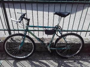 Mountain bike alpina telaio 50