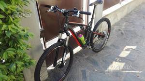 Mountain bike in perfette condizioni