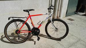 Mtb (Mountain bike) marca Rothmans da 24""