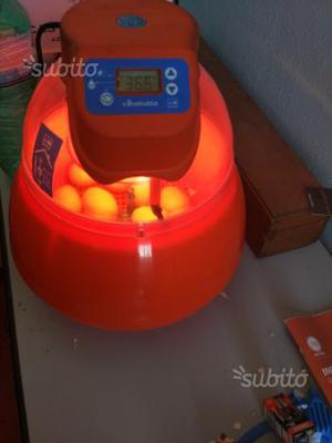 Incubatrice cova tutto automatica 16 uova