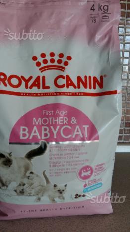 Cibo x mamma gatta e I suoi micini