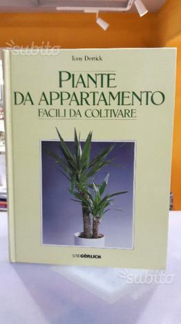 Piante d'appartamento facili da coltivare derrick