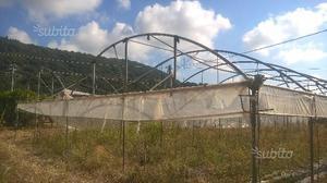 Serra agricoltura serre tunnel orto posot class for Serre tunnel usate