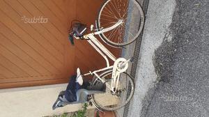 2 bici olandesi