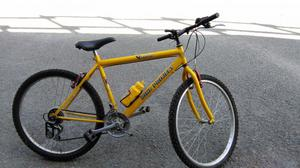 Bicicletta usata da ragazzo