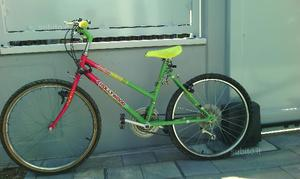 Bicicletta bambino ruota 21