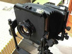 Foto professionale