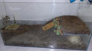 Terrario coperto per tartarughe terrestri posot class for Terrario per tartarughe acquatiche