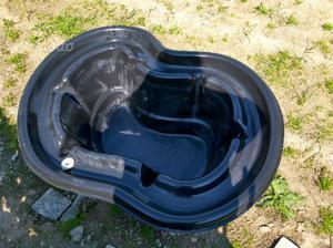 Regalo pesci x laghetto posot class for Pompa per laghetto tartarughe