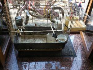 Gabbia per uccelli in buone condizioni
