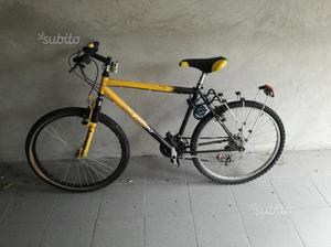 Bicicletta mountain bike